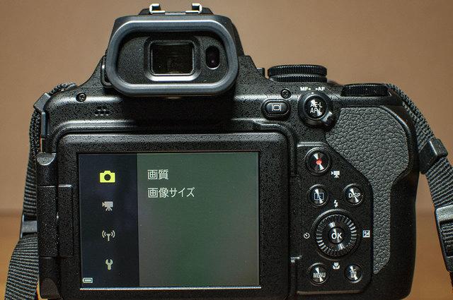 Nikon-P1000-18.jpg