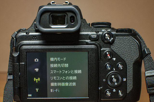 Nikon-P1000-20.jpg