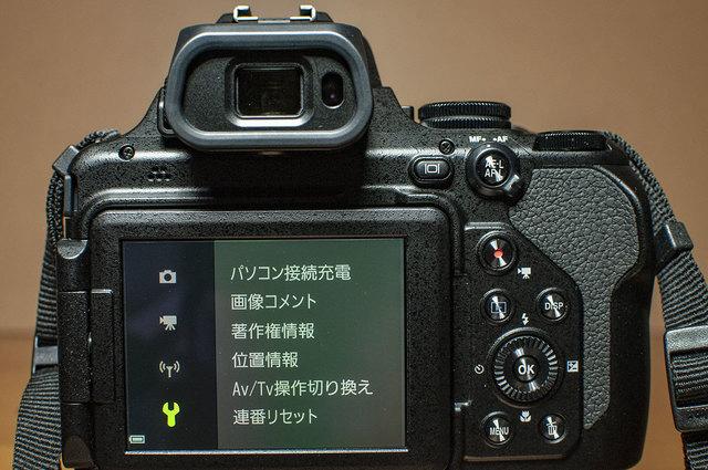 Nikon-P1000-21.jpg