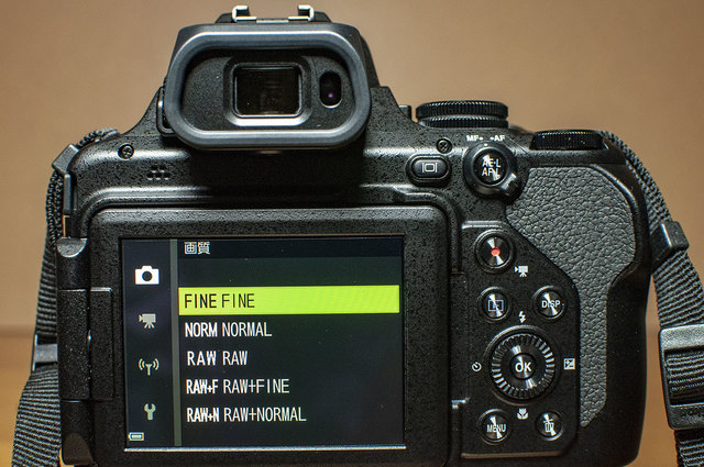Nikon-P1000-22.jpg
