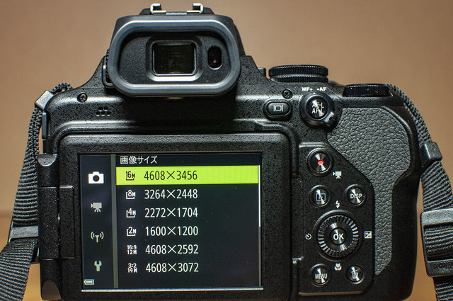 Nikon-P1000-23.jpg