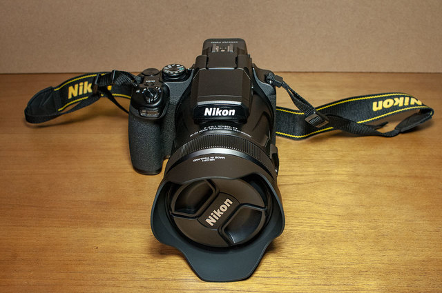 Nikon-P1000-08.jpg