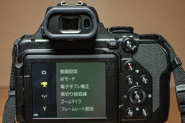 Nikon-P1000-19.jpg