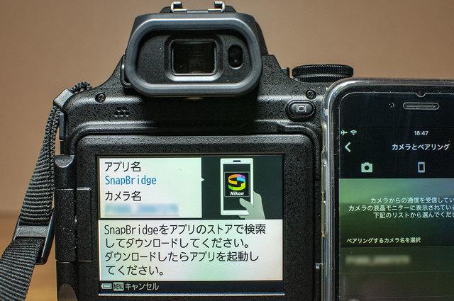 Nikon-P1000-25.jpg