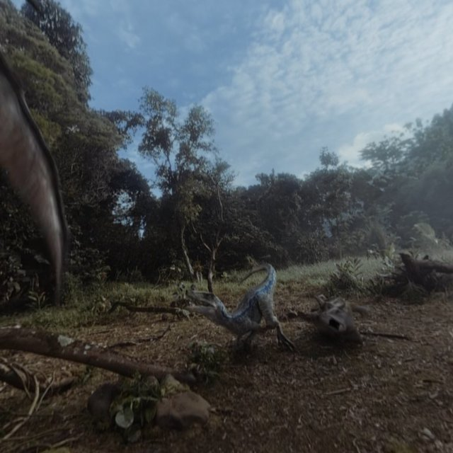 Oculus GO Video06.jpg